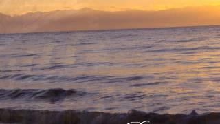 Amare di Nuovo-Yanni & Nathan Pacheco
