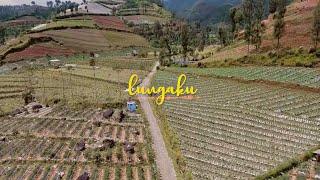 LUNGAKU   GuyonWaton [Short Movie Episode 1] Mas Roy Dan Indah Putri
