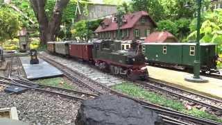 Rollwagenzug mit sächs.  IVK 176  auf meiner Gartenbahn