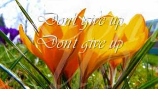 Roch Voisine - Don't Give Up