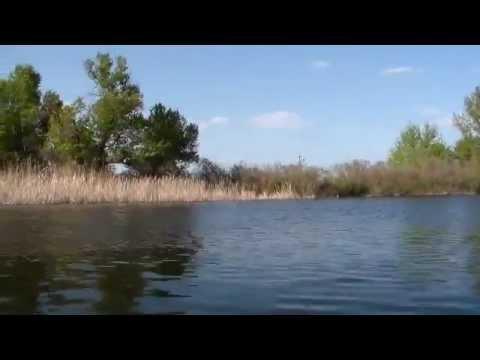 I coltelli video per cacciare e pescare