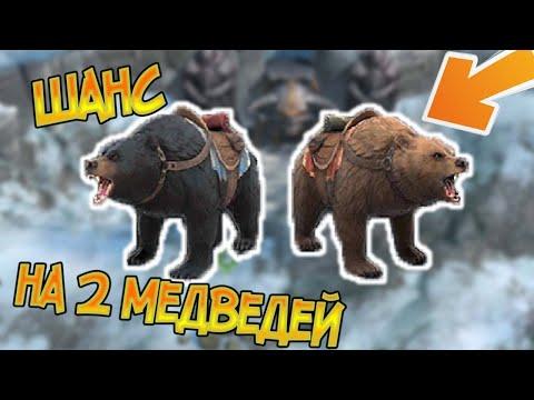 Потратил всё что бы получить медведя ... Frostborn: Action RPG