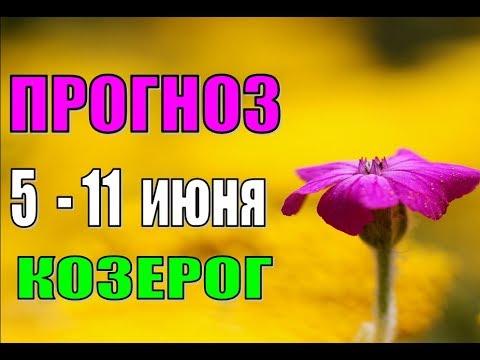 Гороскоп дев на 14 ноября