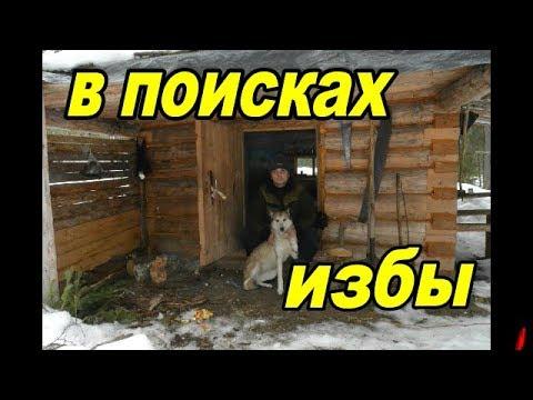 В поисках избы.Один день в зимнем лесу. Looking for a hut.One day in winter forest