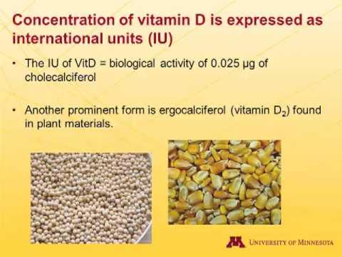 , title : 'Dr. Pedro Urriola - Pig Nutritional Requirements for Calcium, Phosphorus and Vitamin D