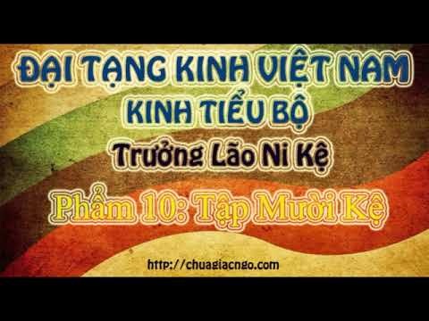 Kinh Tiểu Bộ - 307. Trưởng Lão Ni Kệ - Phẩm 9: Tập Chín Kệ