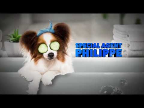 Show Dogs Show Dogs (TV Spot 'Meet Phillipe')
