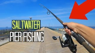 Saltwater Pier Fishing!! (This is Why I Love Saltwater Fishing)
