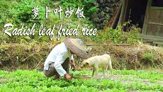 Pull some green radish leaves, stir fry and radish leaves fried rice, super delicious!
