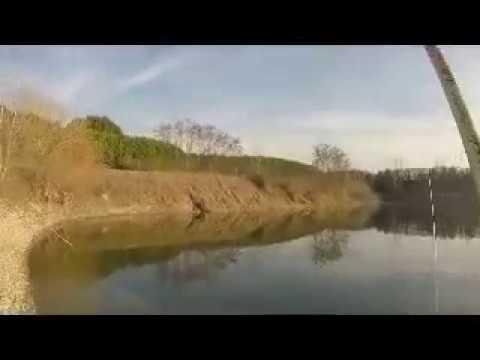 Video su pesca in lino. regionale.