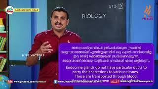 Standard 10   Biology   Class – 16