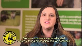 Corporate Video: Video Display Greeting