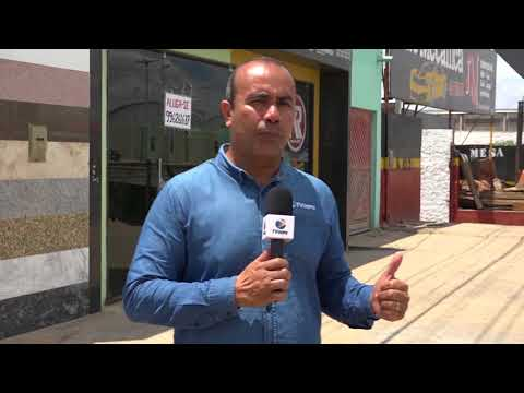 Animais soltos em rodovias colocam em risco motoristas, em Arapiraca