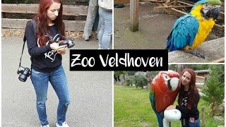 Vlog #5 Zoo Veldhoven - stoute papegaaien en slapende haan?!   Simplynspecial