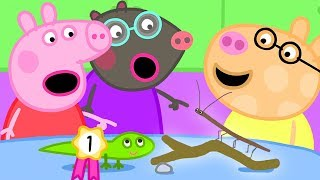 Peppa Pig Official Channel | The Pet Competition at Peppa's Playgroup