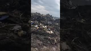 Горит мусоросвалка в селе Кирсово ч. 2