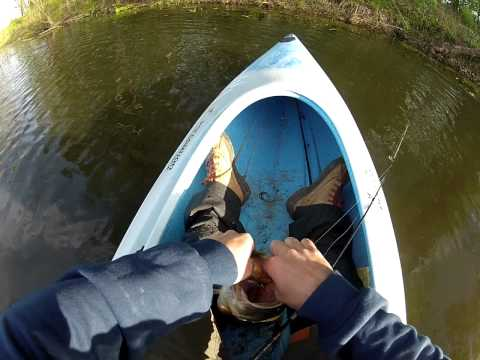 GoPro Kayak Pond Fishing, Big Largemouth Bass