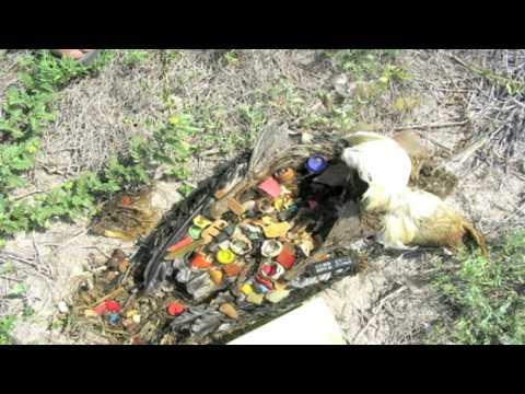 La plastique des poitrines le prix à omske
