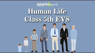 Class 5 EVS-Demo