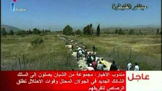 GOLAN HEIGHTS SYRIA BORDER GUNSHOTS