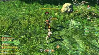 Blade & Soul 1st CBT -Kung-Fu Master Play video 2