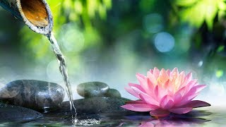 Relaxing Music, Reiki Healing Music, Calm Music, Meditation, Zen, Relax, Spa, Yoga, Sleeping, ☯1930
