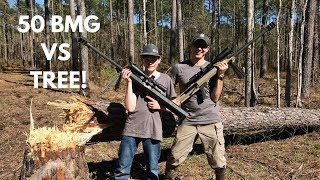 How Many 50 Cal Bullets Does it Take to CUT DOWN A TREE!?!?