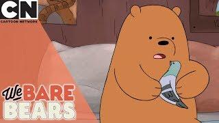 We Bare Bears | What's Better Than Pigeon Friends | Cartoon Network