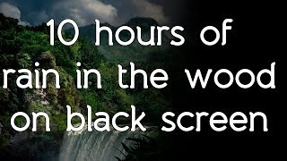🎧 ☁ Rain in the woods sound on black screen dark screen high quality white noise ASMR