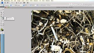 How To Create Digital Scrapbooking Background Paper & Embellishments
