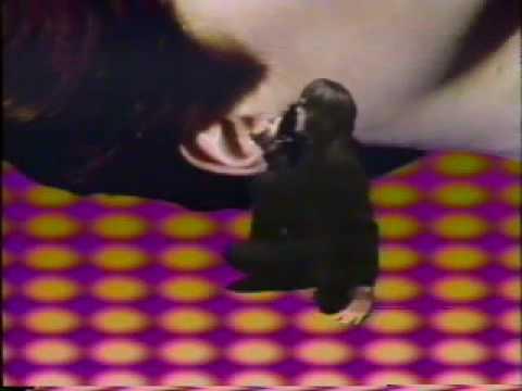 Todd Rundgren-Hideaway