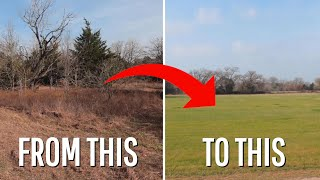 How Grazing {Or Mowing} Can Improve Pasture