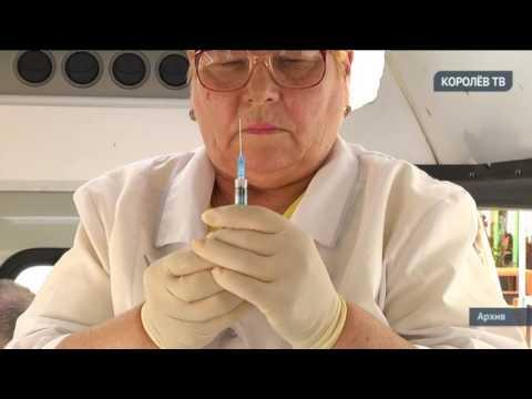 В Королёве сделали прививки педагогам школ и воспитателям детских садов
