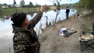 Омск рыбалка на оми