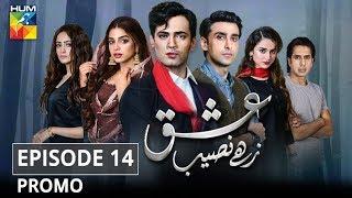 Ishq Zahe Naseeb Episode #14 Promo HUM TV Drama