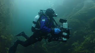 Exploring Greenlands Icy Waters