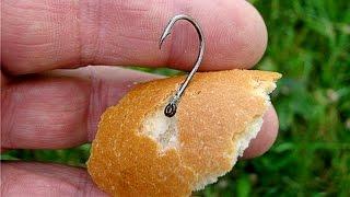 Как правильно насадить хлеб на крючок удочки