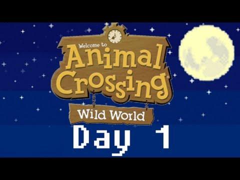 Animal Crossing : Wild World Nintendo DS