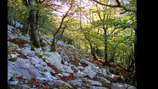 preview picture of video '18.10.2013 Parque Natural de Urkiola (Amboto y Urkiolamendi)'
