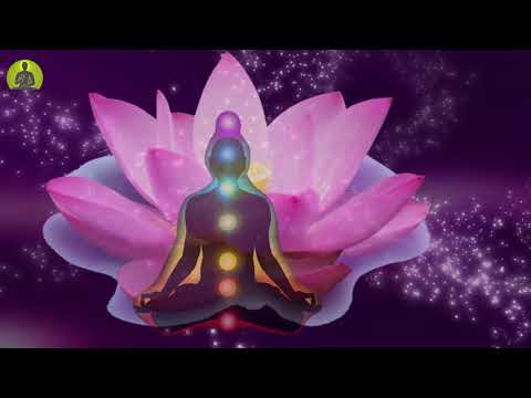 Download Boost Your Chakras Seven Chakras Healing