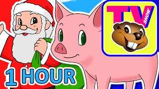 Kids 1 Hour TV Show | Busy Beavers BBTV S1 E5 & E6 | Kindergarten Kids Learning Video