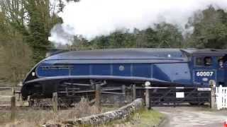 Day Out With Deb And Dave And The  NYMR 50th Anninversay
