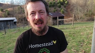 A Warning Against Leaving Everything For Homesteading