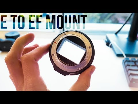 Use CANON LENSES on a SONY DSLR! – FOTGA EF-mount to E-mount Lens adapter Review |Harrison Broadbent