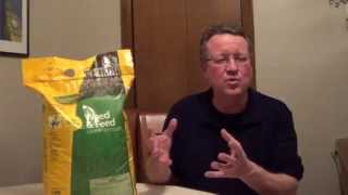 When to Apply Weed and Feed - How to Apply Weed and Feed