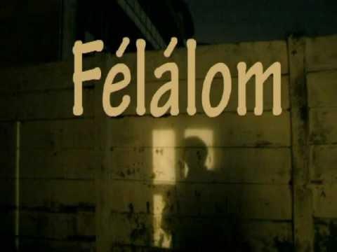 Gábor Éva Mária Félálom, flv fotófilm, 2006