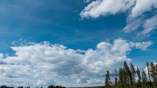 Trip video of Cygnet Lakes Trail