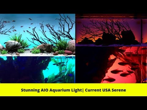 Stunning AIO Aquarium Light| Current USA Serene