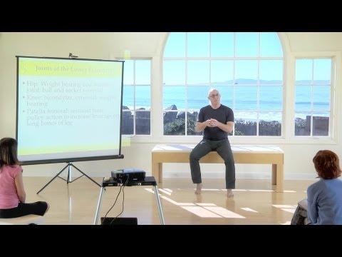 Bewegungsbereich in dem Schultergelenk ist Pronation