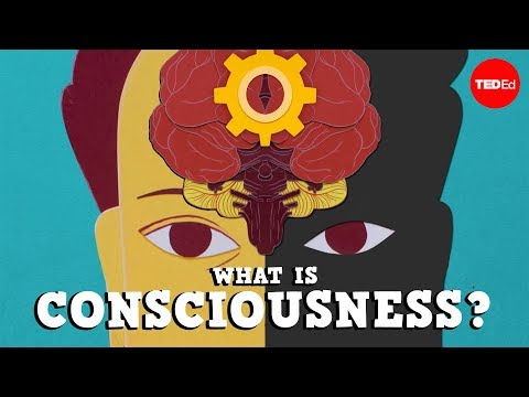, title : 'What is consciousness? - Michael S. A. Graziano'